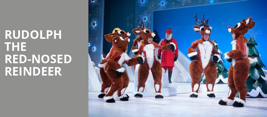 Rudolph the Red Nosed Reindeer, Ovens Auditorium, Charlotte