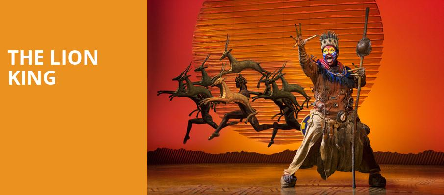 The Lion King, Belk Theatre, Charlotte